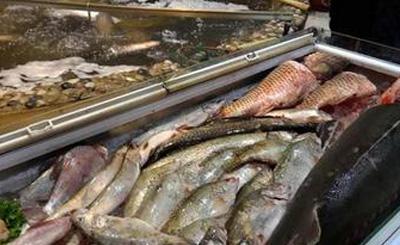 鲟鳇鱼属于国家二级野生保护动物