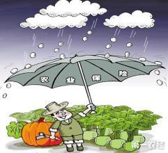 农业保险市场-华夏经纬市场调查公司
